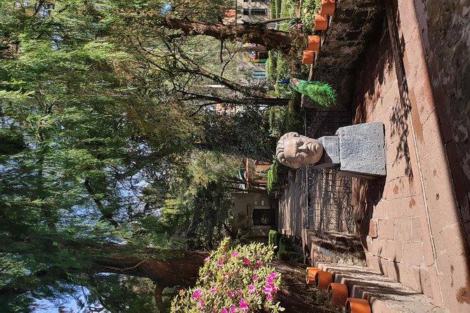 Xochimilco and Dolores Olmedo Museum Tour