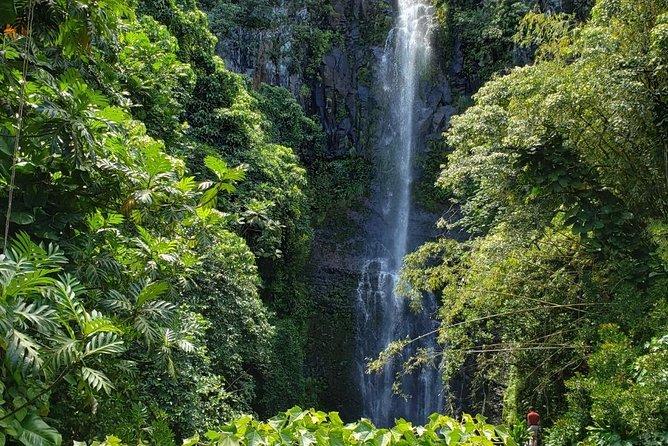 Maui Tour : Private Road to Hana from Lahaina