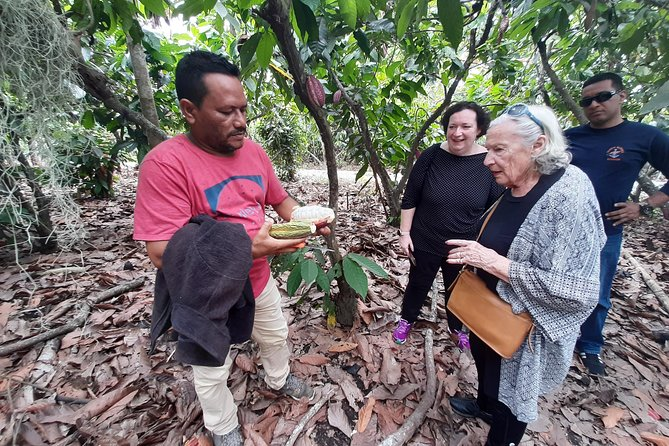 Excursion Day to Cocoa Farm from Guayaquil