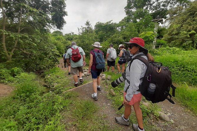 Full day to Ecological Reserve Churute Mangrove