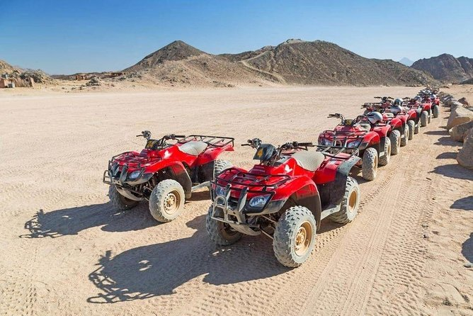 Dune Buggy Safari, Camel Ride and BBQ Dinner from Sharm el-Sheikh