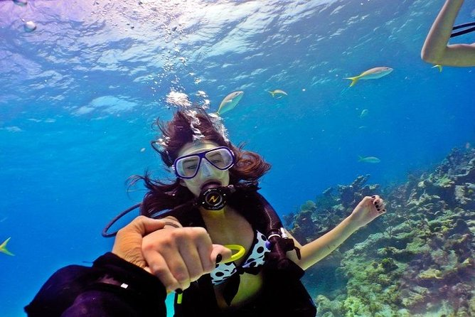 Full-Day Snorkeling Adventure in Giftun Island from Hurghada with Lunch