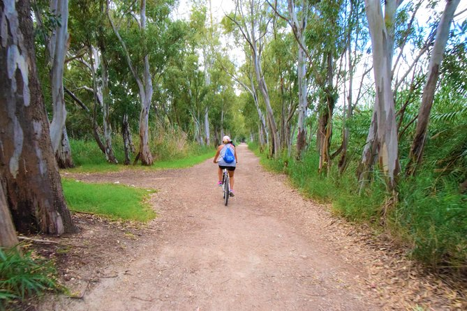 2 days by bike through beaches and natural parks of Valencia with guide
