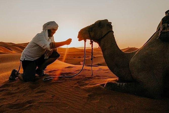 3 Days Tour from Fez to Marrakech via Merzouga Desert