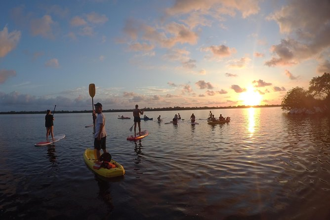 Stand Up Paddleboarding (SUP) - Tour