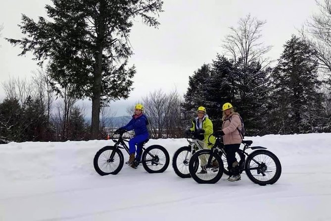 Guided electric fat bike tours photo 6
