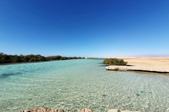 Full Day Tour to White Island & Ras Mohamed National Park from Sharm El Sheikh photo 17