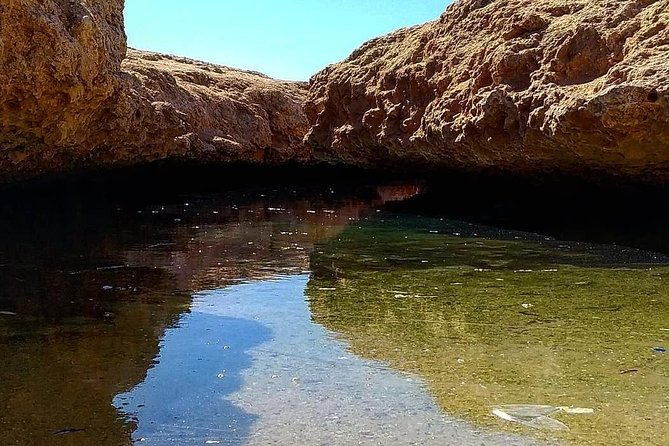Full Day Tour to White Island & Ras Mohamed National Park from Sharm El Sheikh photo 12