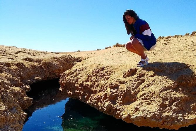 Full Day Tour to White Island & Ras Mohamed National Park from Sharm El Sheikh photo 3