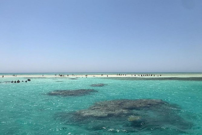 Full Day Tour to White Island & Ras Mohamed National Park from Sharm El Sheikh photo 8
