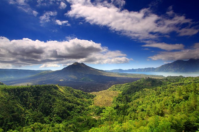 Private Full-Day Tour: Kintamani Volcano and Ubud Village Tour