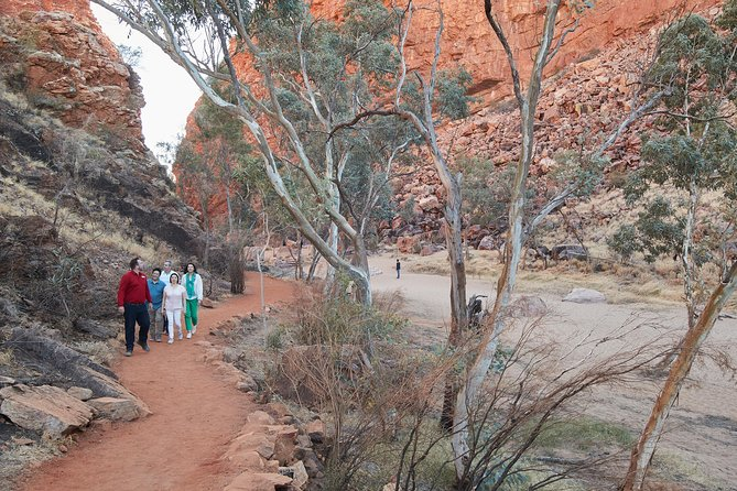 West MacDonnell Ranges- Half Day Trip from Alice Springs