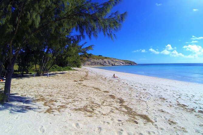 Lizard Island Day Tour by Air from Cairns
