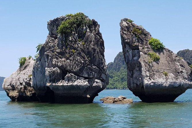Ha Long bay full day tour (6 hours in bay, transfer via express highway) photo 12