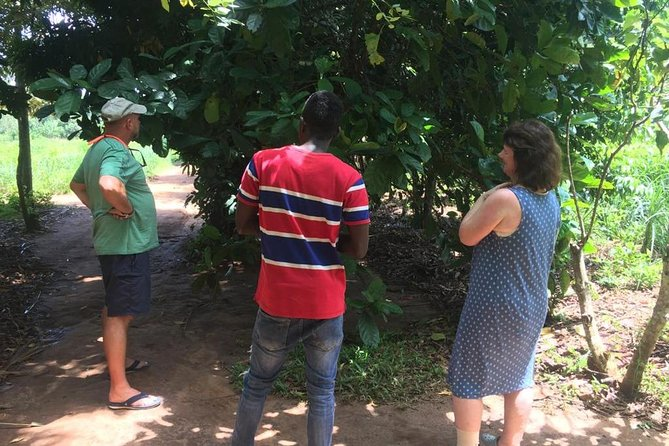 Spice Farm and Jozani Forest Private Tour in Zanzibar