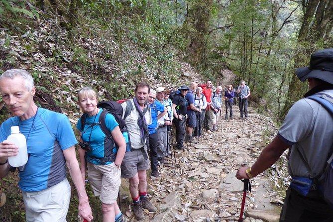 9 Days Private Tour Darjeeling Sandakphu Phalut Trek