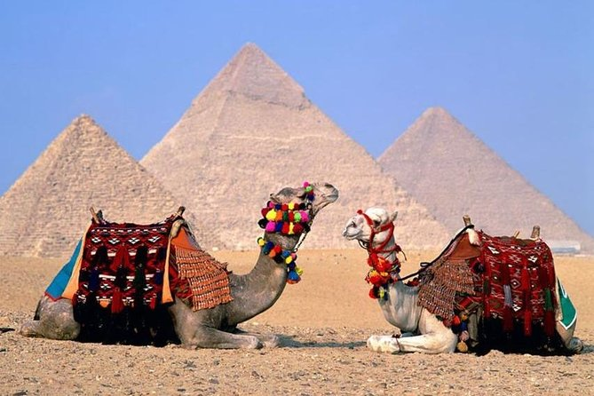 Cairo Over day Trip (Pyramids & Egyptian Museum)-Hurghada
