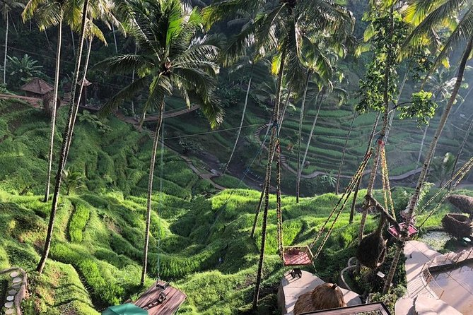 Hidden Village of Heaven & Ubud Instagrammable Full-Day Tour