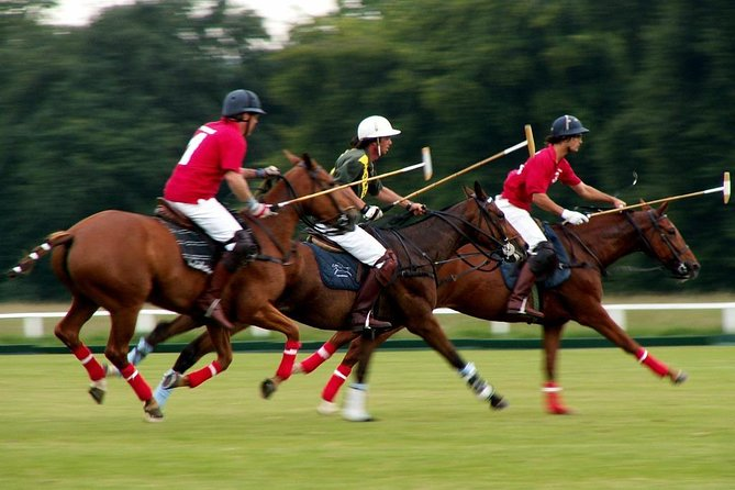 Polo & horseriding in Provence by WAWU