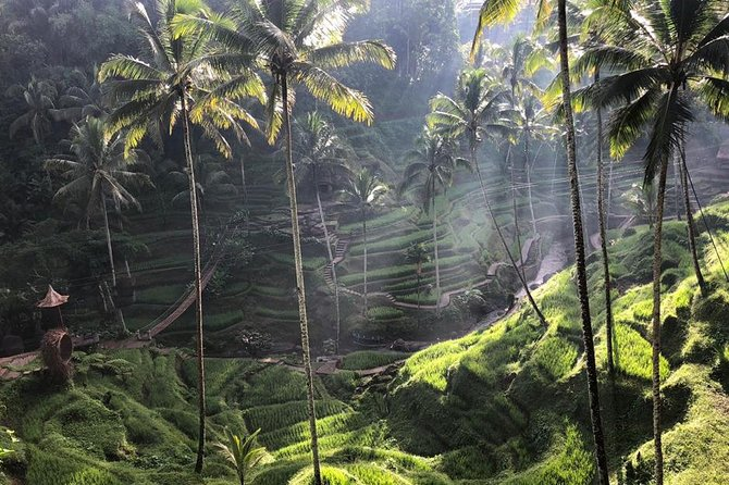 Hidden Village of Heaven And Ubud Tour photo 2