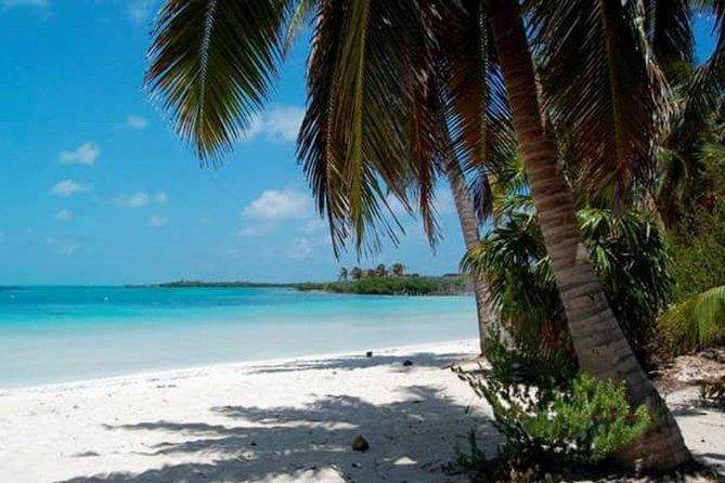 Full Day Adventure in Isla Contoy - All Inclusive