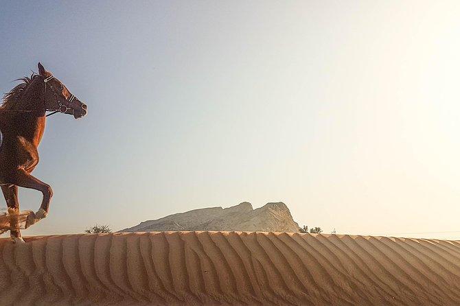 Mleiha Desert Hack - Horseback riding tour with transfers from Dubai