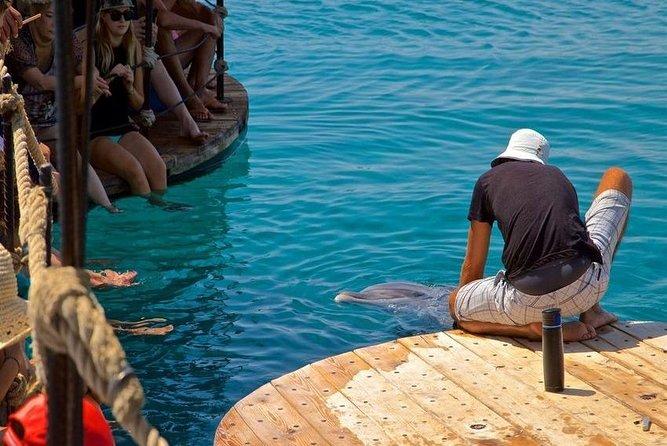 Snorkeling Trip At Satayh Dolphin Reef