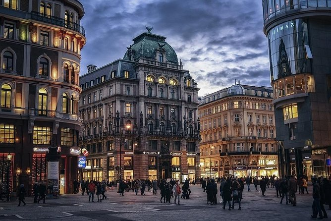 Vienna By Yourself with English Chauffeur