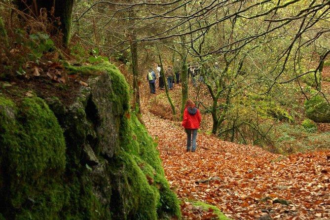 Protected Landscape of Corno de Bico