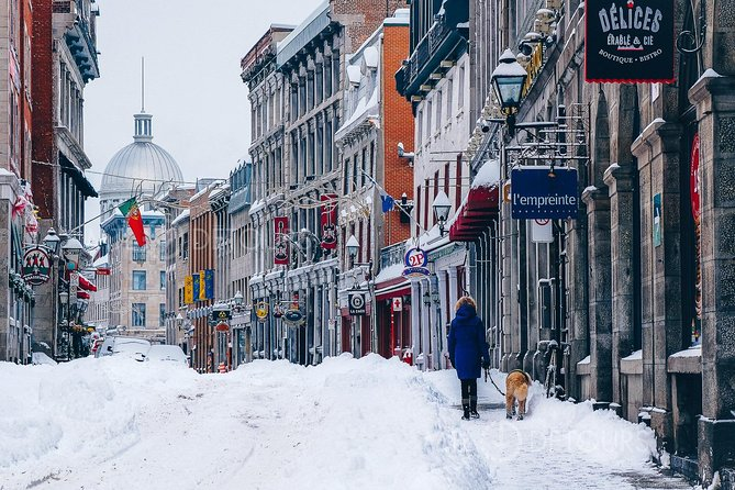 Winter Charms of Old Montreal & Notre-Dame Basilica Small Group Tour