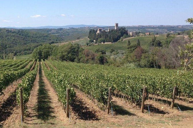 Chianti Wine Tour - Private Wine experience in Tuscany Countryside