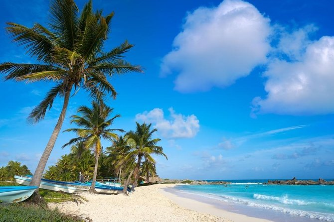 Cozumel Island Private Excursion by Van