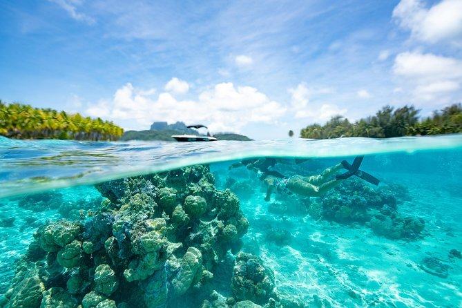Passeio ecológico com snorkel