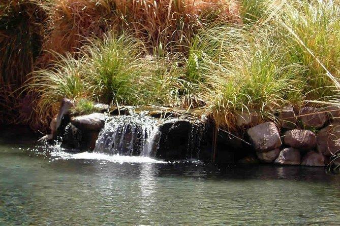 Puritama Natural Springs in Atacama Desert