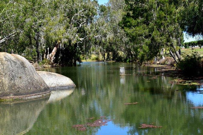 Daintree - Cape Tribulation & Atherton Tablelands Tours From Port Douglas