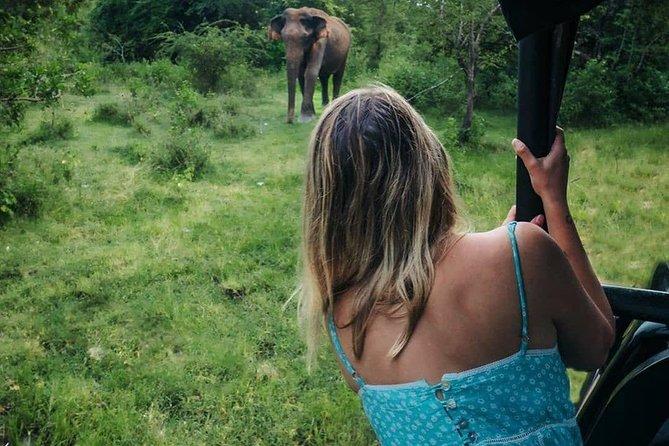 Two Days Tour to Bentota and Udawalawe National Park