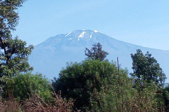 Machame route 6 day climb