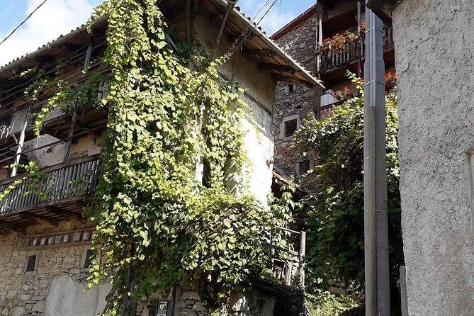 Collio Friuli Tourist Tour and Wine Tasting