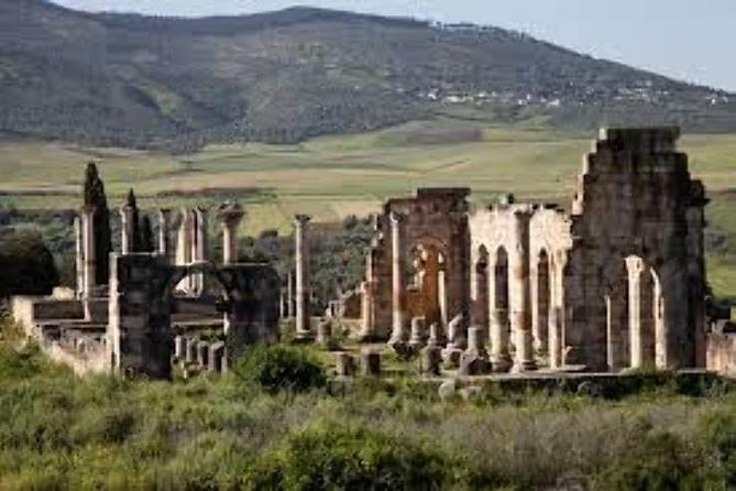 Meknes Volubilis Moulay Driss Day Trip