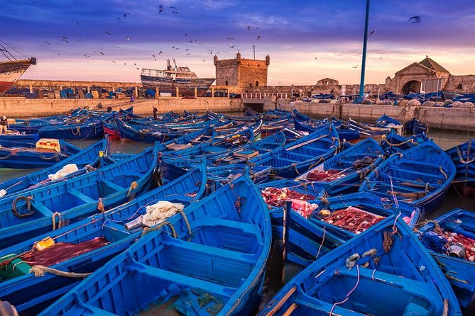 Day tip to Essaouira – 1 day (Private day trip)