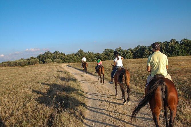 Murgia Park: Horse riding tour