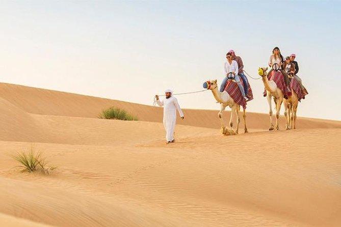 Dubai: Desert Safari with Camel Ride & Dune Bashing