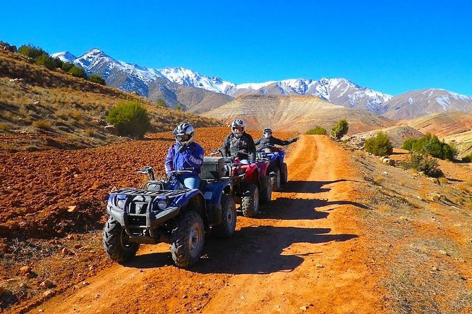 Quad Bike Ride In The Palm Grove Of Marrakech