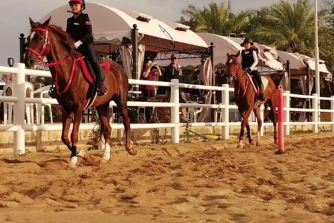 desert horse riding experience photo 1