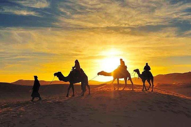 camel trekking in sahara desert & spend overnight in a Desert camp