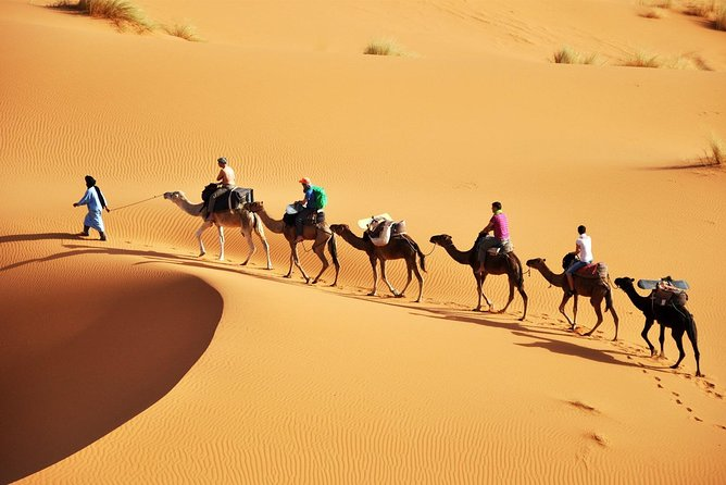 Erg Chigaga Desert Dream