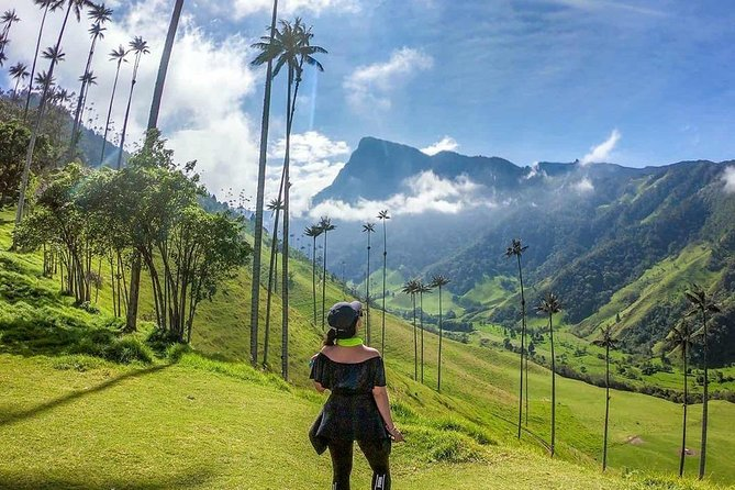Excursion in the Cocora Valley