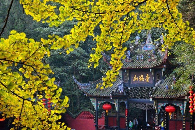 Chengdu Private Day Tour to Qingcheng Mountain and Dujiangyan Wolong Panda Base
