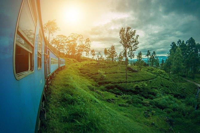 Ceylon Highlights - 7 Days Tour