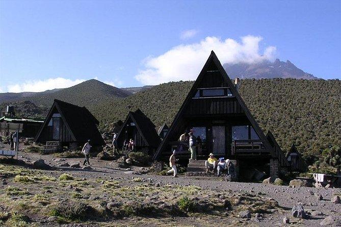 Kilimanjaro National Park Day Trip